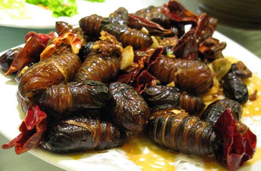 Weird Food In India: कैसे यह अजब गजब व्यंजन