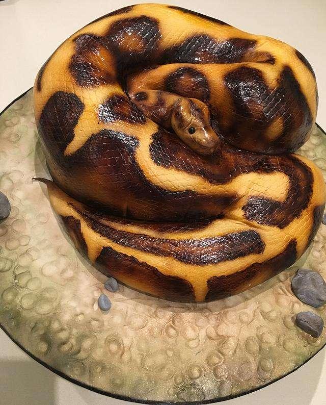 snake_cake.jpg