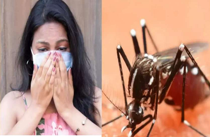 कोरोना की तरह डेंगू भी बदल रहा चरित्र, विशेषज्ञ चकित