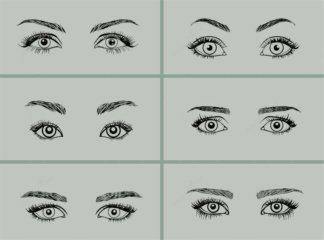 shapes_of_eye.jpg