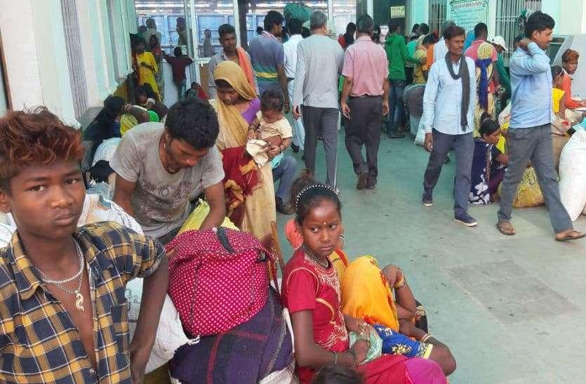 मनरेगा में मजदूरी के दावों की पोल खोलती कटनी-मुड़वारा रेलवे स्टेशन पर पलायन की तस्वीरें