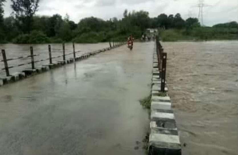 नदियां उफान पर, बाढ़ का खतरा, युवक बहा, देखें video