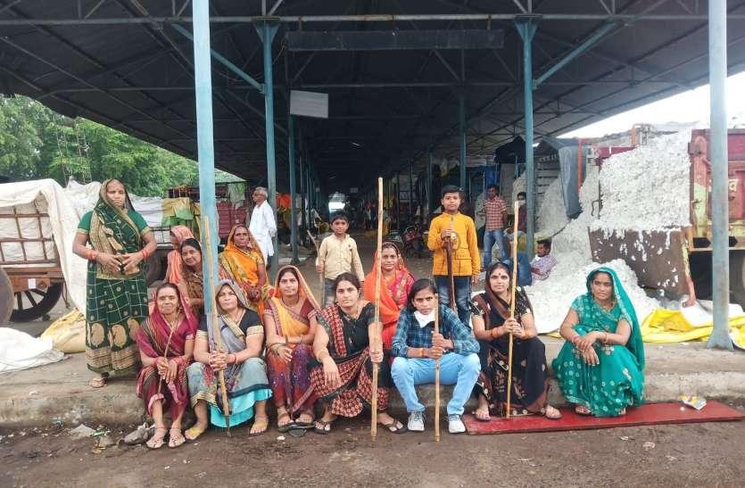 VIDEO कपास नीलामी मुहूर्त में पीडित किसानों ने किया विरोध प्रदर्शन