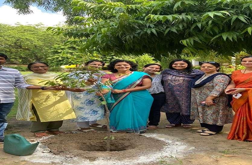 महारानी कॉलेज के छात्रावास में लगाए फलदार पौधे