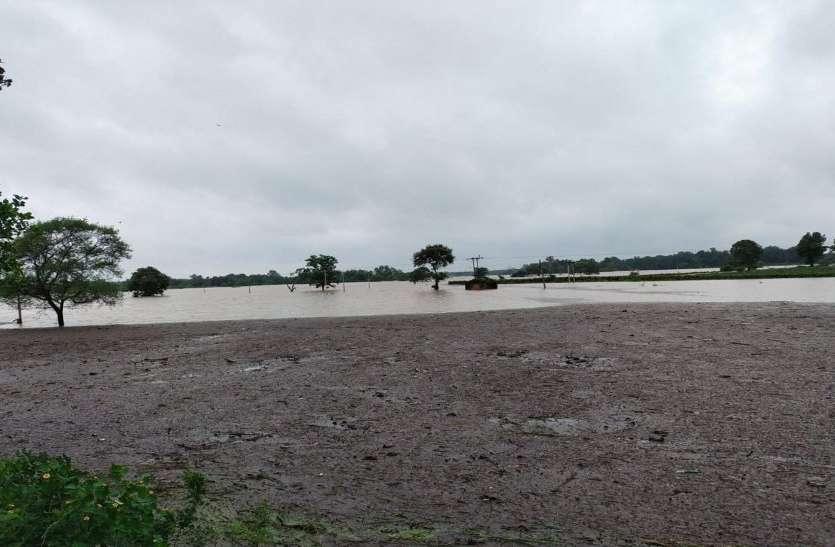 बारिश से 100 एकड़ फसल बर्बाद, किसानों ने मांगा शासन से मुआवजा