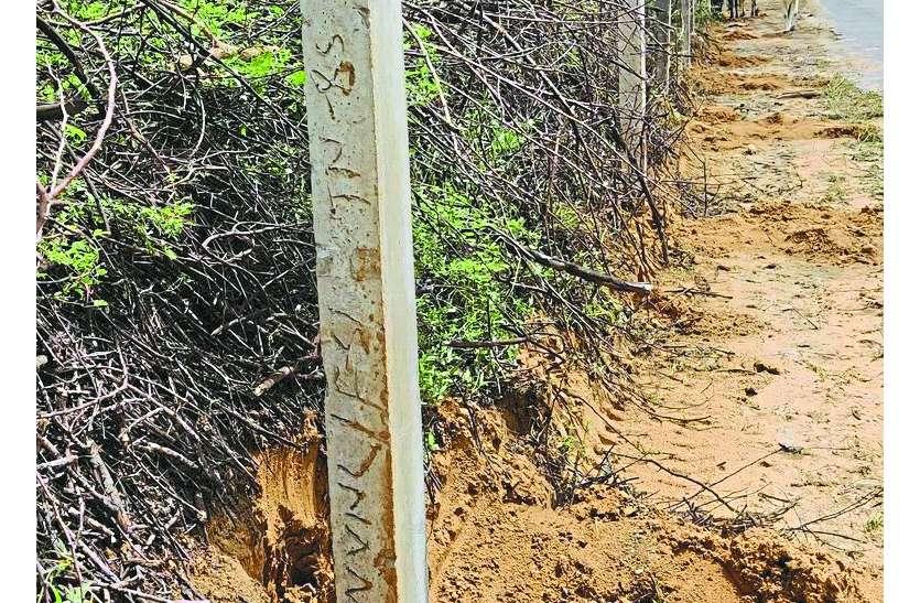 घोटाला: ठेकेदार को लगाने थे 64 विद्युत पोल, 24 खंभे बेच खेतों में करवा दी तारबंदी