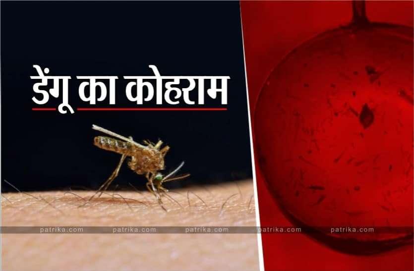 डेंगू का कोहराम : 433 पहुंचा डेंगू का आंकड़ा, चार दिन में दूसरी मौत, विधायक भी आए चपेट में