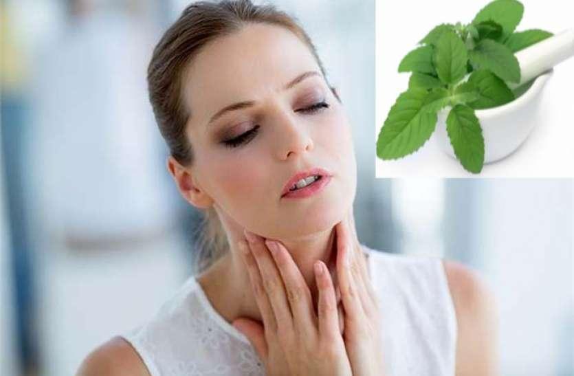 Health Tips: गले की खराश में आराम देगा तुलसी का पानी