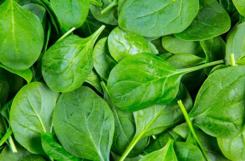 Super Food Spinach Health Benefits: साधारण से लगने वाले हरे-भरे पालक के गुणों को जानकर रह जाएंगे दंग