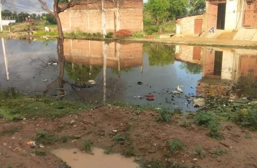 डेंगू का एक और मरीज मिला, कई घरो में मिला लार्वा