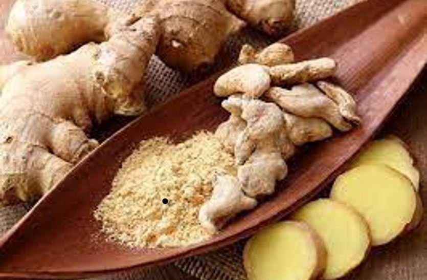 Herbs Benefits: इम्युनिटी को रखना है मजबूत तो डाइट में शामिल कर सकते हैं इन हर्ब्स को