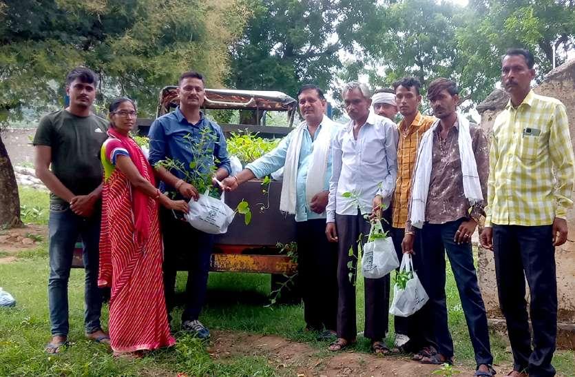 40 किमी दूर तक गांवों में बंट चुके 30 हजार पौधे