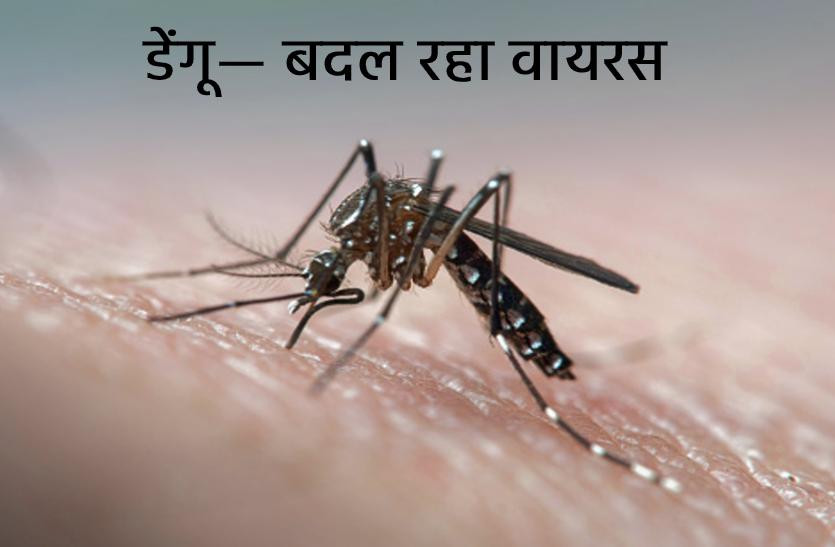 कोरोना की तरह बदल रहा डेंगू का वायरस, मरीजों में अलग-अलग लक्षण, डॉक्टर भी हैरान