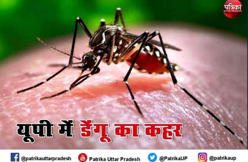 ब्रज में डेंगू के डंक ने ली 5 और की जान, लगातार बढ़ रहे मामलों ने बढ़ाई लोगों की चिंता