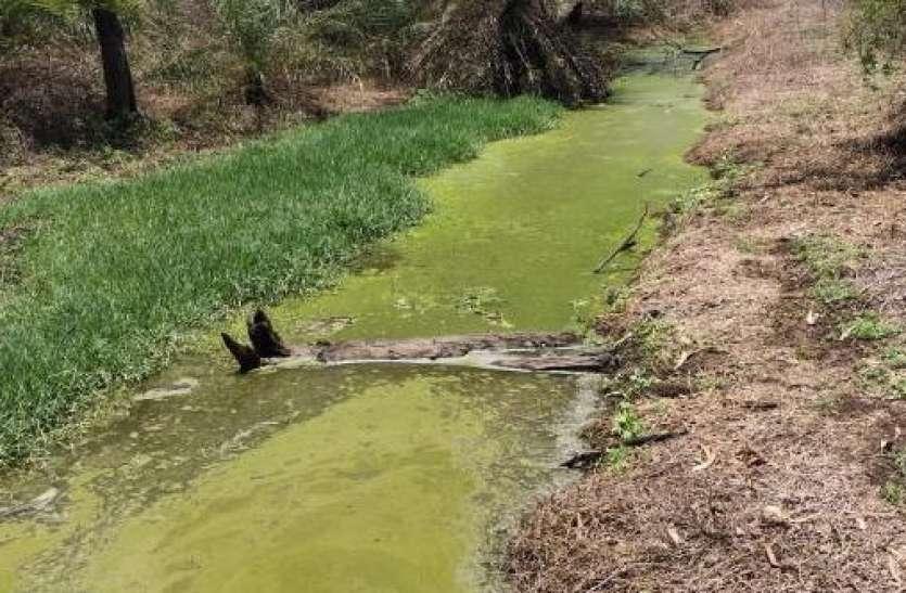 केमिकल अपशिष्ट से भूमिगत जल दूषित होने की आशंका