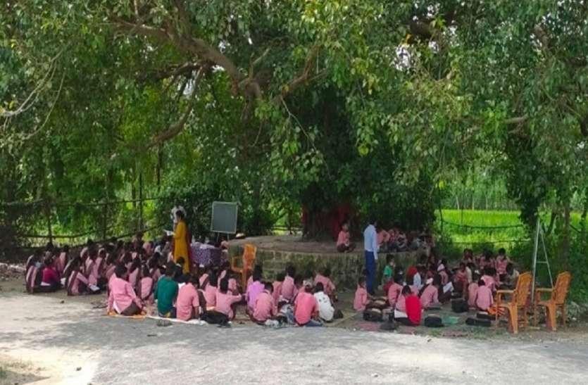 पीपल के पेड़ के नीचे क्यों पढ़ रहे इस सरकारी स्कूल के बच्चे, आखिर क्या है जादू?