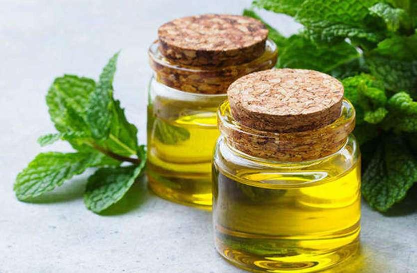 Mentha Oil Rate Mentha Oil Price : डिमांड बढ़ने से इस हफ्ते और बढ़ सकते हैं मेंथा ऑयल के दाम, जानें- आज का Mint Oil Price