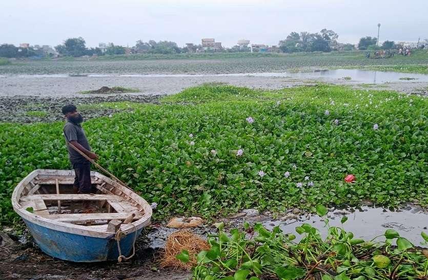 बरसातमें विषैले कचरे की जगह भर गया पानी, लोगों ने शुरू कर दी खेती