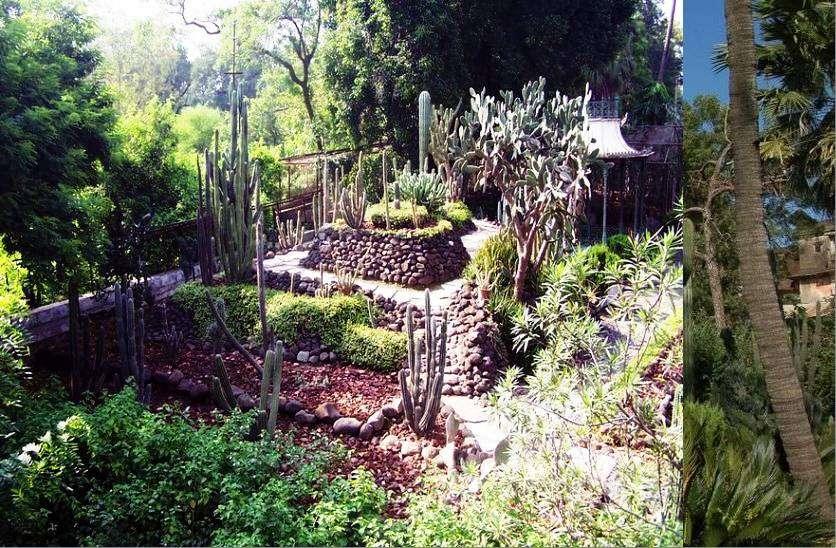 ratlam_cactus_garden__2.jpg