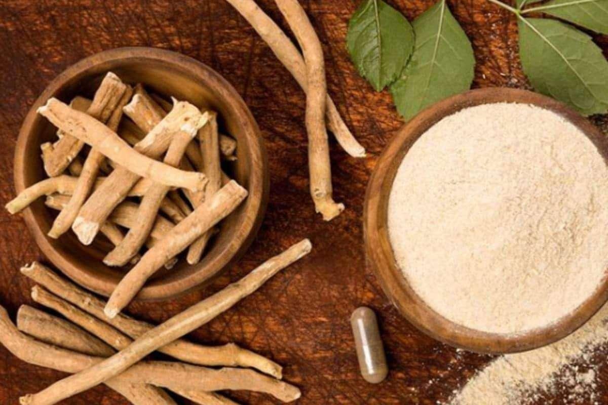 Ways To Increase Stamina: शरीर में एनर्जी लेवल और स्टैमिना को बढ़ाने के लिए कर सकते हैं इन हर्ब्स का सेवन