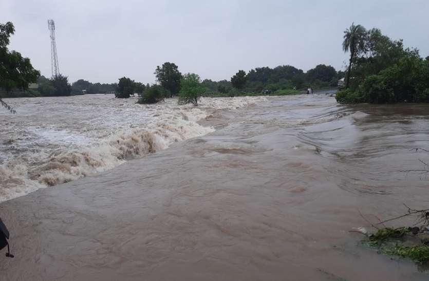 Gujarat News : 14 जिलों में 100 फीसदी से अधिक बारिश
