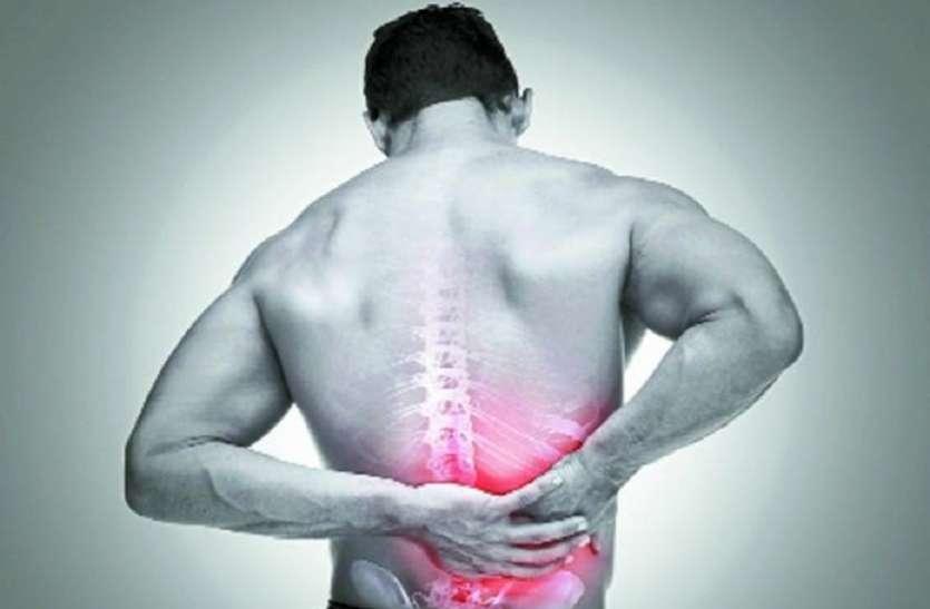 Back Pain Diet: पीठ के दर्द से रहते हैं परेशान तो डाइट में शामिल कर सकते हैं चीजों को