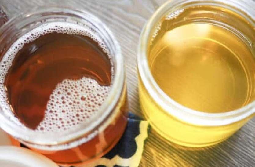 Eating Food Without Ghee  Oil Can Make You Sick: वजन घटाने के चक्कर में घी, तेल छोड़ना कर सकता है बीमार