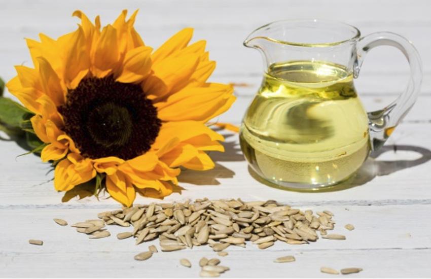 Sunflower Seeds For Skin: स्किन को बनाना चाहते हैं ग्लोइंग और सॉफ्ट तो करें सनफ्लावर सीड्स के बीज का सेवन