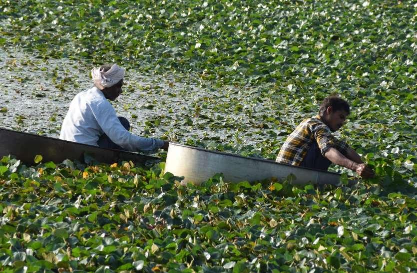 किसानों को उद्यानिकी और पशुपालन की सलाह देंगे अधिकारी
