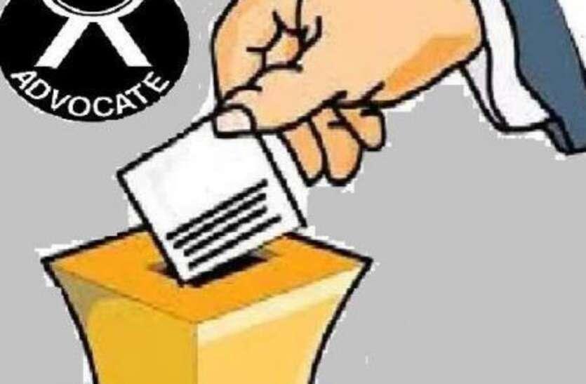 5 बजे जानिए: जिला अधिवक्ता संघ का कौन होगा नया अध्यक्ष, चल रहा मतदान