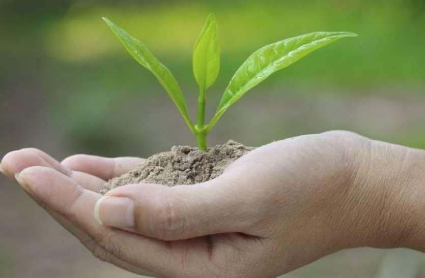 वैज्ञानिकों का दावा- अब खेती के लिए जमीन की जरूरत नहीं, हवा के जरिए तैयार होगी रोटी