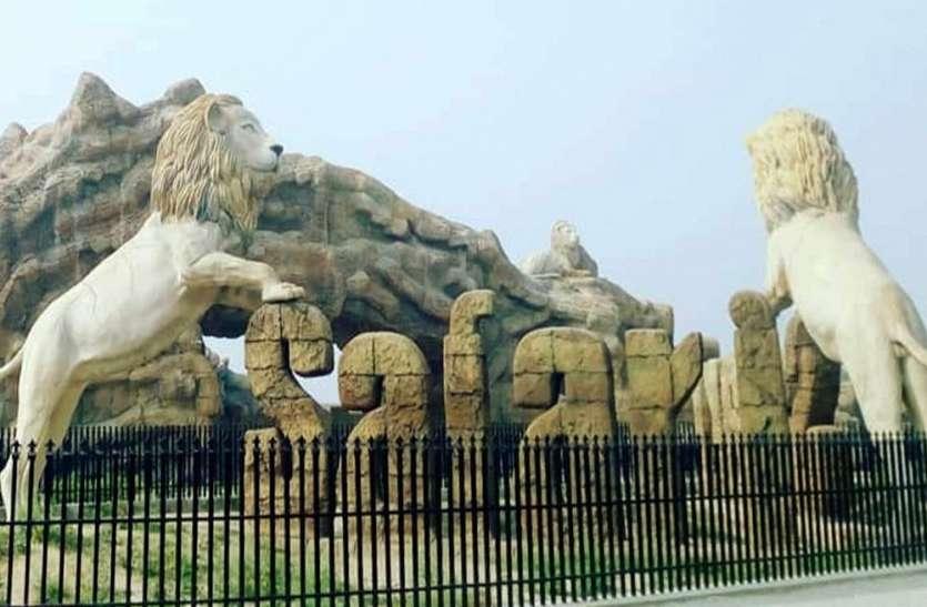 Good News: सफारी प्रशासन ने कर ली पूरी तैयारी, दिवाली से पहले पर्यटक कर सकेंगे शेरों का दीदार