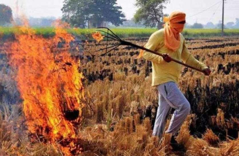प्रदूषण: पराली जलाने नहीं गलाने के लिए किया जाएगा डी-कंपोजर घोल का छिड़काव