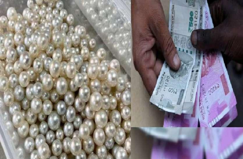 Earn Money: 25 हजार रुपये खर्च करने पर होगी लाखों की कमाई, इस व्यापार से बजेगा सफलता का डंका