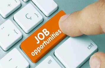 RIICO Recruitment : स्टेनोग्राफर, जेई सहित 217 पदों पर नौकरी के अवसर