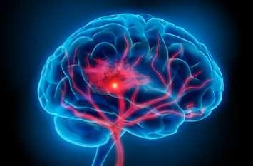Amazing Facts about Human Brain: आइए जानते हैं मानव दिमाग के आश्चर्यजनक तथ्य के बारे में