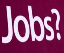 बेरोजगारों के लिए जॉब्स ही जॉब्स, पढ़ें यहां