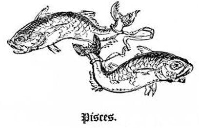 मीन (Pisces) (दी, दु, थ, दे, दो, चा, ची)