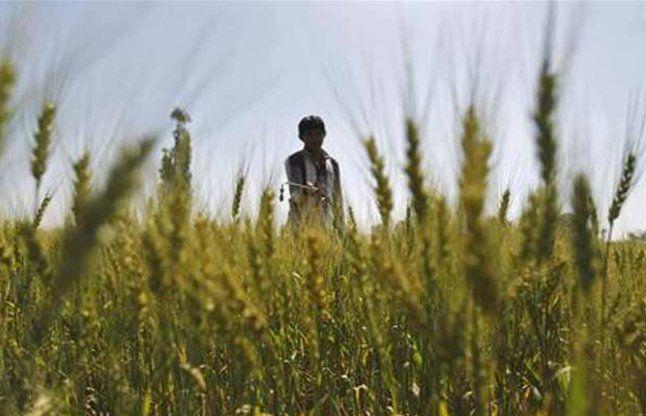 किसानों के लिए 1092 करोड़ रुपए का राहत पैकेज जारी