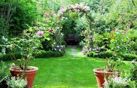 फ्लावर हब में बदलेगा जौनपुर, महकेंगे हजारों किस्म के फूल