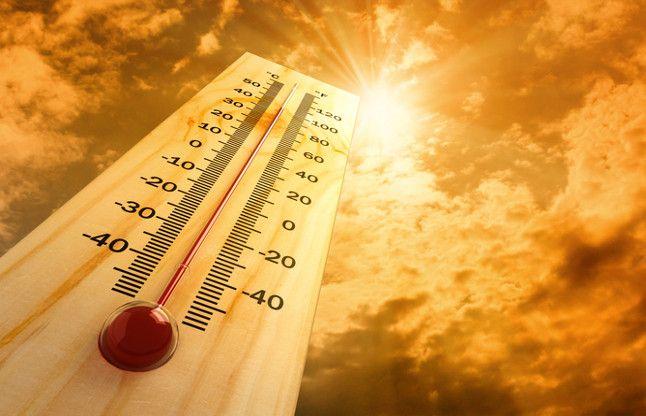 2015 में सर्वाधिक गर्म रही पृथ्वी : वैज्ञानिक