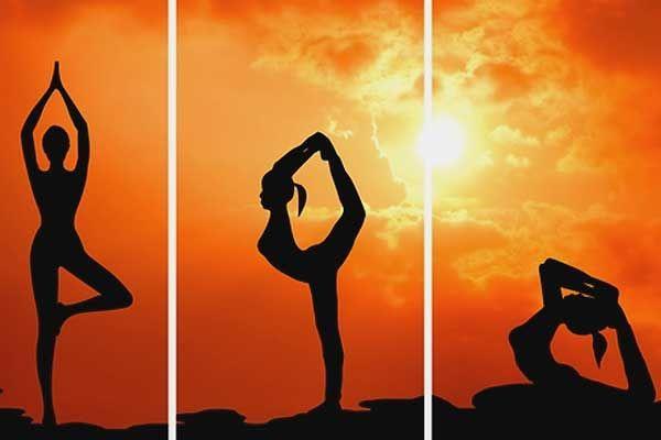 Yoga And Pranayama Diseases - योगासन और प्राणायाम से बीमारियों का इलाज |  Patrika News