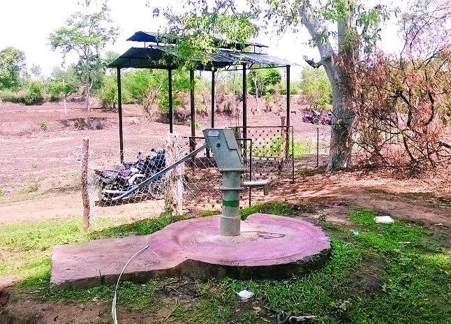 शासकीय जमीन पर जमाया कब्जा, पीएचई की बोर से उगा रहा फसल