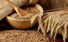 6 Health benefits of wheat bran - Lucknow News in Hindi