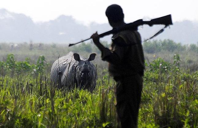 विपरीत परिस्थितियों में 24 घंटे काम करते हैं वनरक्षक, वेतन बस नाममात्र