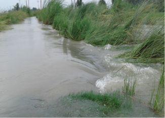 बाढ़ ने मचार्इ तबाही, डेढ़ दर्जन गांवों में भरा पानी, आधा दर्जन गांवों का आवागमन बाधित