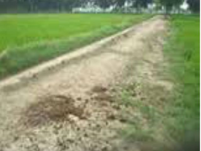 मंत्री के इशारे पर अधिवक्ता की भूमि पर बना चकमार्ग, डीएम ने साधा मौन