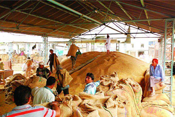 इंदौर मंडी में आया 1000 बोरी नया सोयाबीन, 4001 रुपए क्विंटल तक बिका