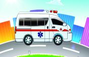 इमरजेंसी लैंडिंग के बाद बच्चे की मौत पर उठे सवाल