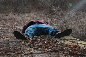 झाड़ियों में मिला छात्र का शव, हत्या की आशंका
